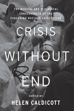 Crisis Without End book cover