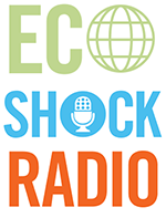 Eco Shock Radio