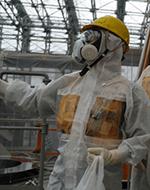 Fukushima 2013